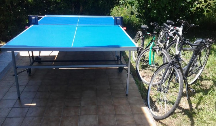 Ping pong bici mtb