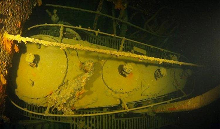 elba-diving-15