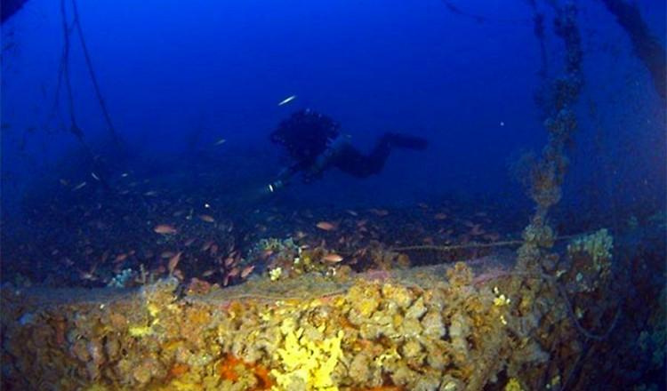elba-diving-16