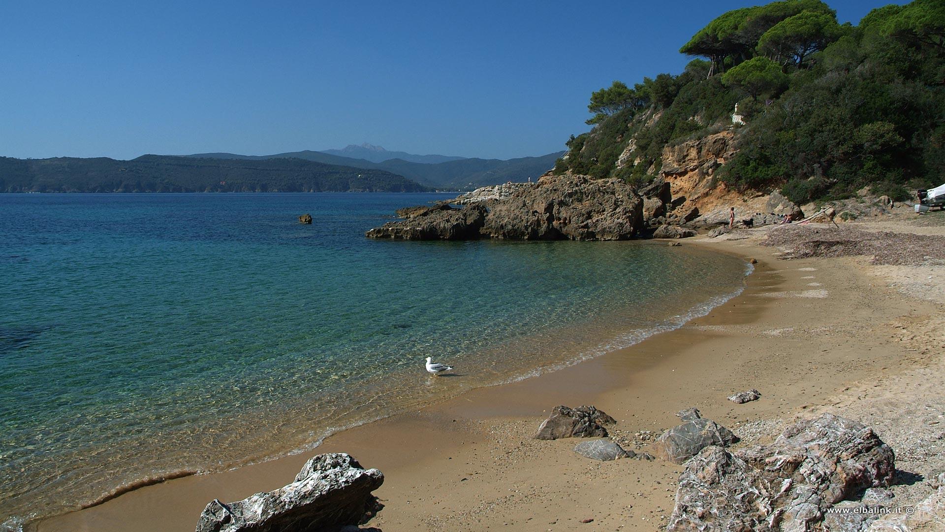 Family Hotel Isola D Elba