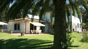 rondini-home