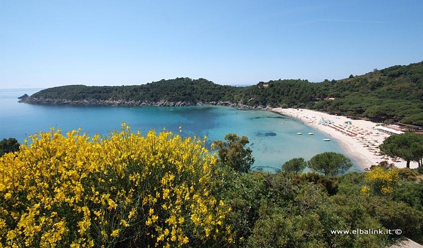 Spiaggia di Fetovaia - Isola d'Elba