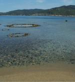 spiaggia-di-galenzana-elba