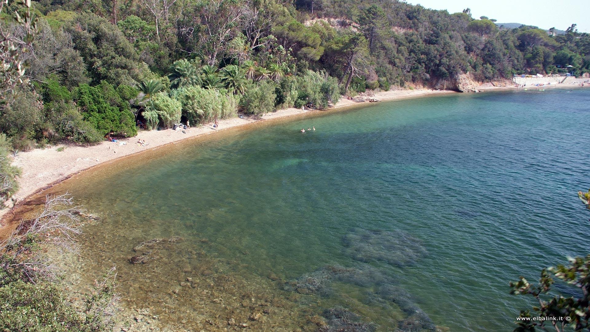 Spiaggia della Concia - Isola d'Elba