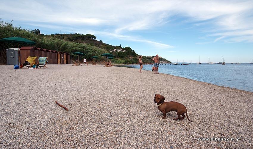 Spiaggia di Mola - Isola d'Elba
