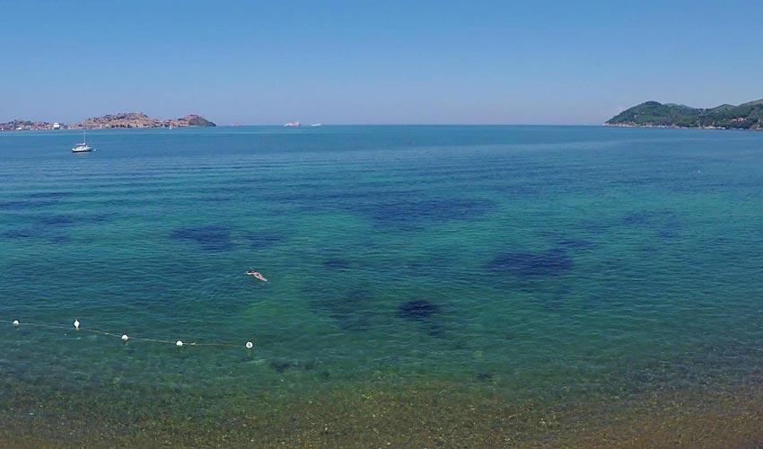 Schiopparello, Elba