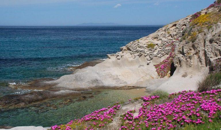 Dependance Bellavista, Elba