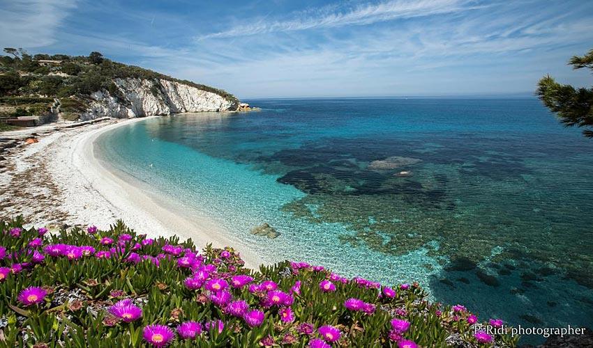 Spiaggia della Paduella, Elba